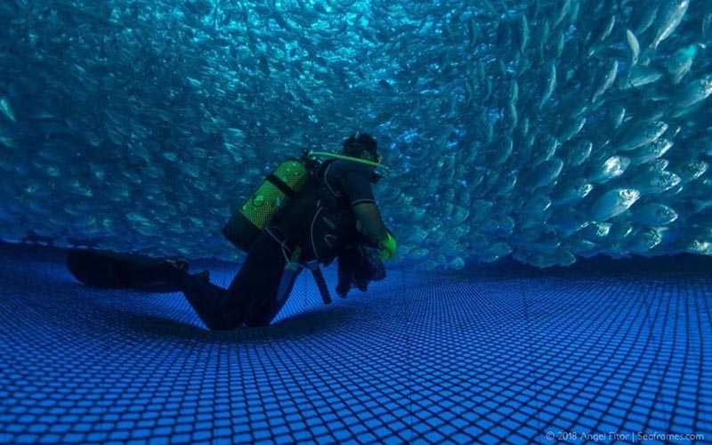 Redes Mar Adentro - Redes de pesca