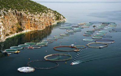 ¿Qué es la acuicultura?